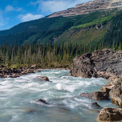 Water flowing down a fast moving river with mountains in the background. | AFNWA